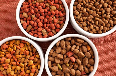 Dog food varieties